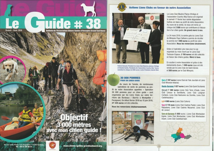 article chiens guides
